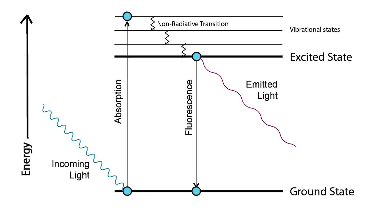 hight resolution of jablonski diagram explanation