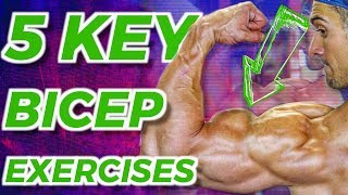 The BEST BICEP WORKOUT! (Sets, Reps, Rest Included)