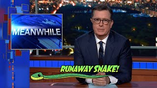 Meanwhile... Runaway Snake
