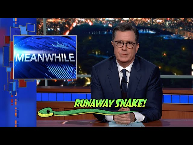 Meanwhile... Runaway Snake