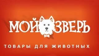 Мой Зверь в Перми - товары для животных