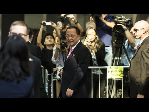 North Korean Foreign Minister Heads To Sweden