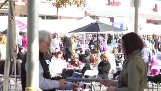 Jane Pratt on Richmond and Festivals