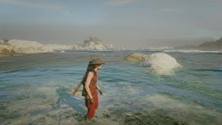 Red Dead Redemption 2_20190218230629