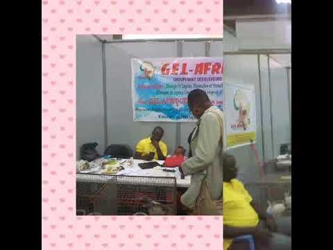 GEL. AFRIQUE  AU SIALO