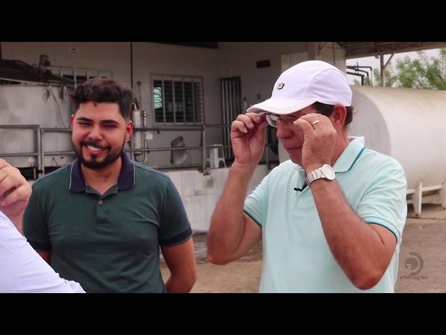 Primeira reportagem da série sobre laticínios em Alagoas