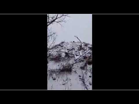 Суровый Новочеркасск - 27.01.18 - Это Ростов-на-Дону