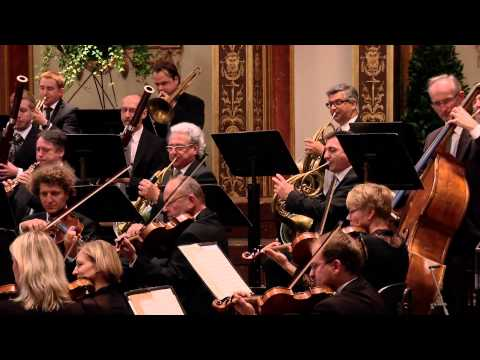 Vienna Johann Strauss Orchestra Concert For The National