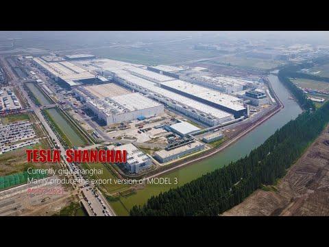 #310  #Tesla shanghai \ Is China's local Tesla demand waning? \ 4K