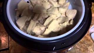 Chicken and Rice in the Aroma rice cooker RV Life