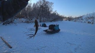 видео Отчет о рыбалке. У судака другие планы!