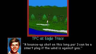 PGA Tour Golf II (SMD) TPC at Eagle Trace fly by hole previews