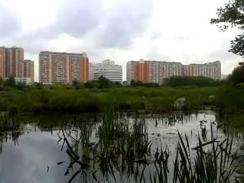 новостройки район северный свао москва