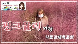 가을맞이 경북으로 단풍놀이 가즈아!!!!_구미편