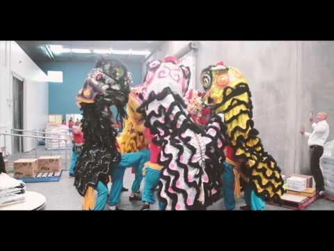 Melbourne Dai Bi Quan Am Lion Dance Team - 2017 highlights