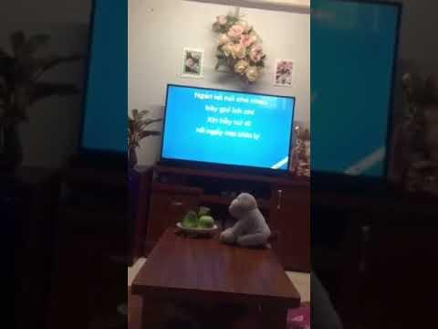 Loa hát karaoke cho gia đình goldsound W240