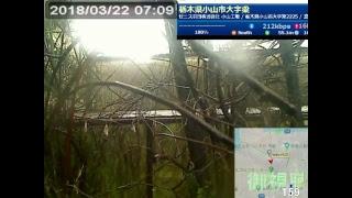 tokyo920 JAPAN Trailer トレーラー LIVE CAMERA ライブ配信