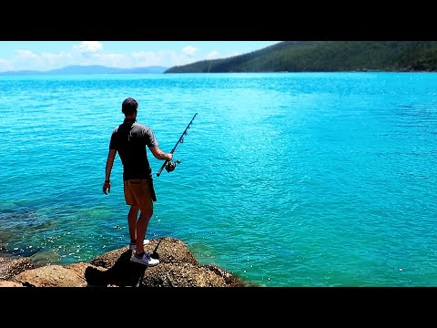 Monster Cod!!! | Fishing Tropical Islands with Dennis Verreet Part 2