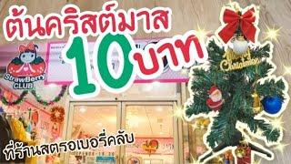 ต้นคริสต์มาส 10 บาท ที่ร้านสตรอเบอรี่คลับ   Christmas Tree 10 THB