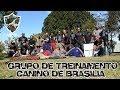 Grupo de Treinamento Canino de Brasilia - DF - Cursos e Seminarios Canil Escola