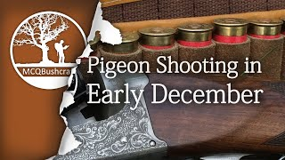 Bushcraft Hunting Pigeons in Early December