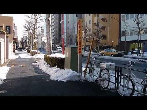 Tokyo snow, Nakano-ku, 09 Feb 2014
