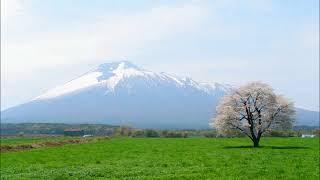 桜の隠す別れ道は、兄弟デュオ、平川地一丁目の2ndシングルで2004...