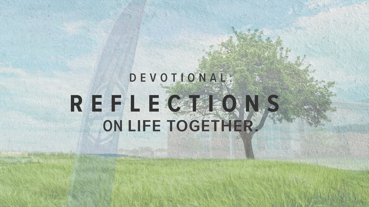 Reflections on Life Together: The Ministry of Bearing with One Another