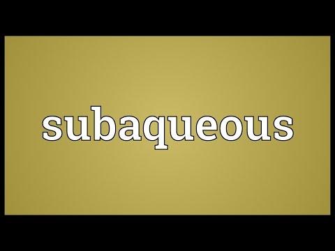 Header of subaqueous