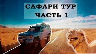 Египет отдых Шарм эль Шейх. Сафари тур на джипах, покатушки на верблюдах. Чать 1