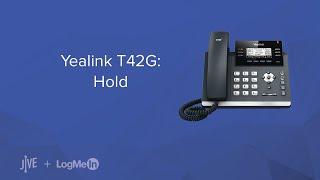 Yealink T42G: Hold
