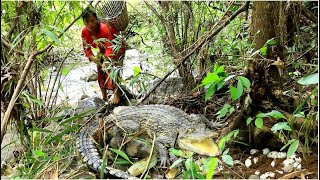 woman looking for food met crocodile & egg for cook- Egg for dog and cat food- cooking in forest HD