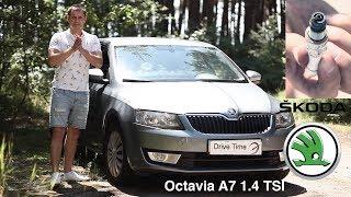 Skoda Octavia A7, с одноразовым двигателем - Drive Time