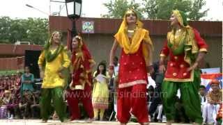 Giddha palo - come dance Punjabi style at Wagah!