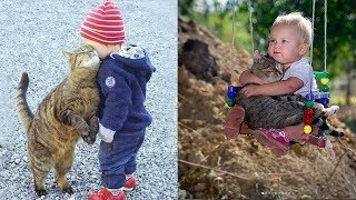 Cute baby and pets - A cute baby and a cat - A baby and a cat play extremely funny