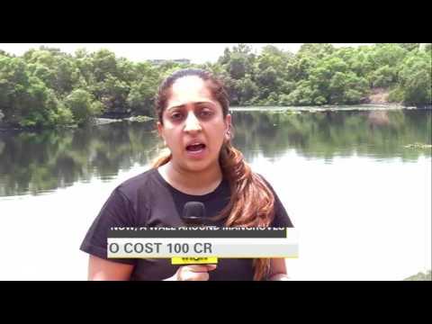Mumbai's mangroves to be walled off