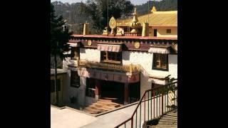 Puja,Monks praying, in Dip Tse Chok Ling Monastery McLeod Ganj, Dharamsala