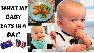 WHAT MY BABY EATS IN A DAY - 10 MONTHS - USA vs NEW ZEALAND COLLAB!