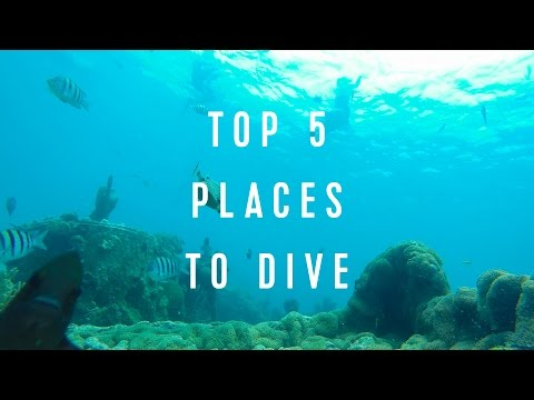 Royal Caribbean Top 5: Places To Dive