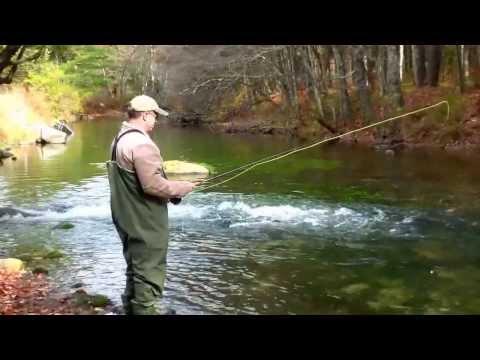 Swift River MASS Fly Fish