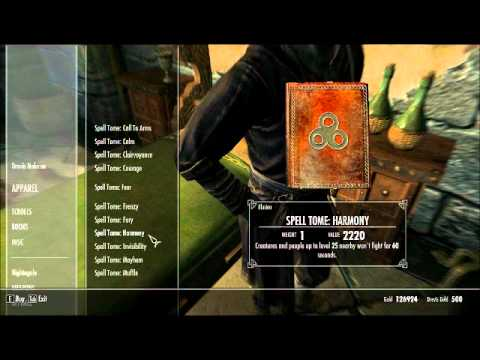 Skyrim: Master Level Illusion Magic
