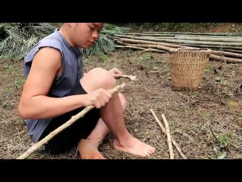Primitive Technology:  Prepare to make a hut (Primitive-skills)