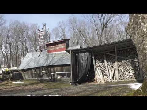 The changing face of VT's Maple Syrup Industry Vimeo HD 1080p 29 97