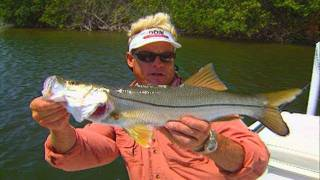 Space Coast Canals - REDFISH, SNOOK & TARPON in residential canals
