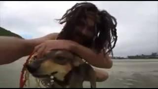 Vídeo do cachorro correndo atrás do homem