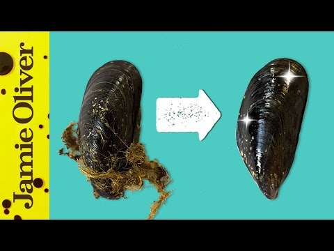 How To Prepare Mussels | 1 Minute Tips | Bart's Fish Tales