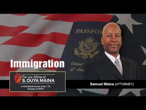 How Are Immigration Decisions Handled By The Board Of Immigration Appeals (BIA)? | (415) 391-6612