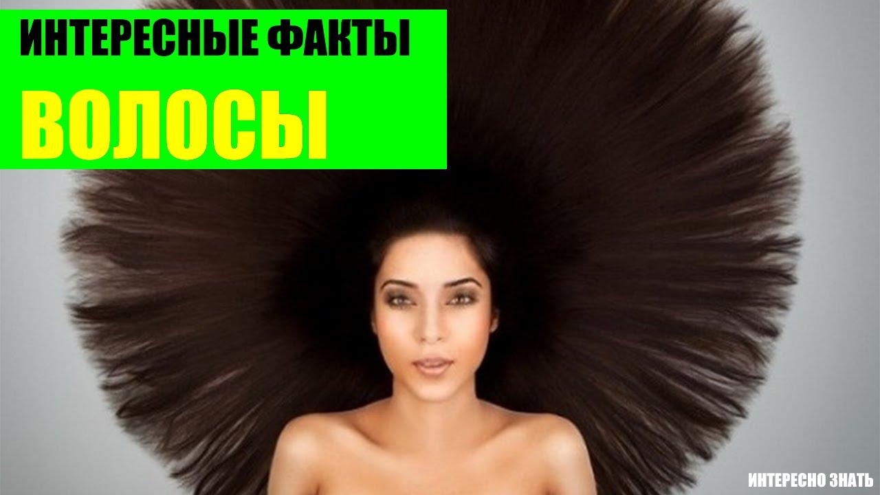 Самые интересные факты о волосах