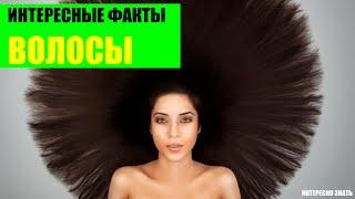 видео Мифы о волосах | Жирные волосы | Мытье волос | Уход за волосами | Настин блог
