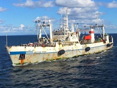 Корабли и капитаны , не ушедшие в нирвану
